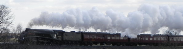 Steam Train - Union of South Africa