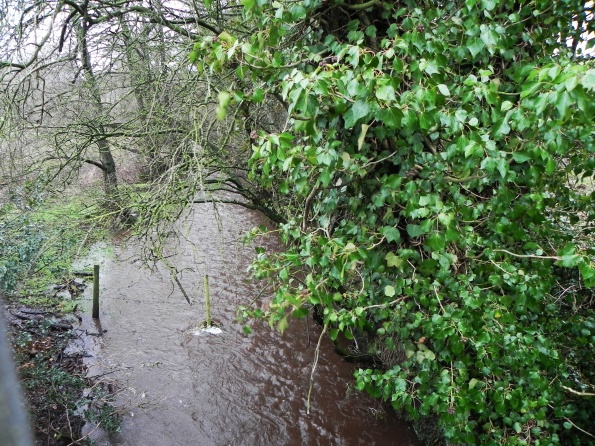 The Beck In Flood