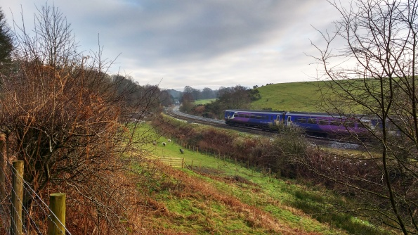 Our local train, on its way to Newcastle.