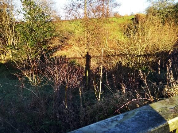 shadow at the railings